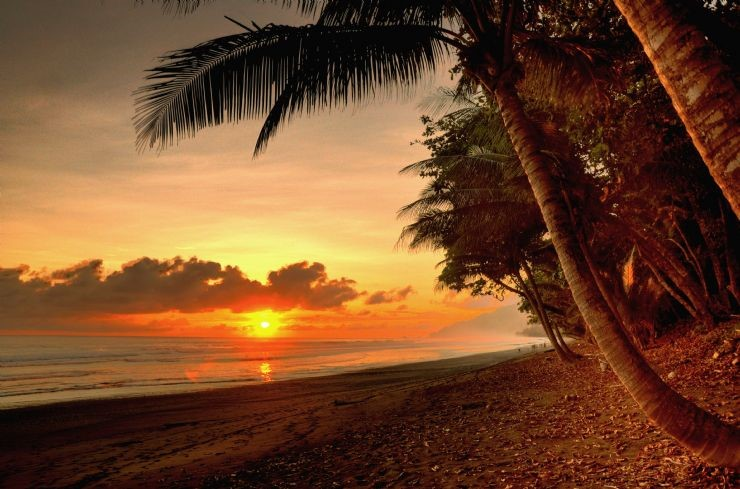 Splendid Attractions in Costa Rica-Corcovado National Park
