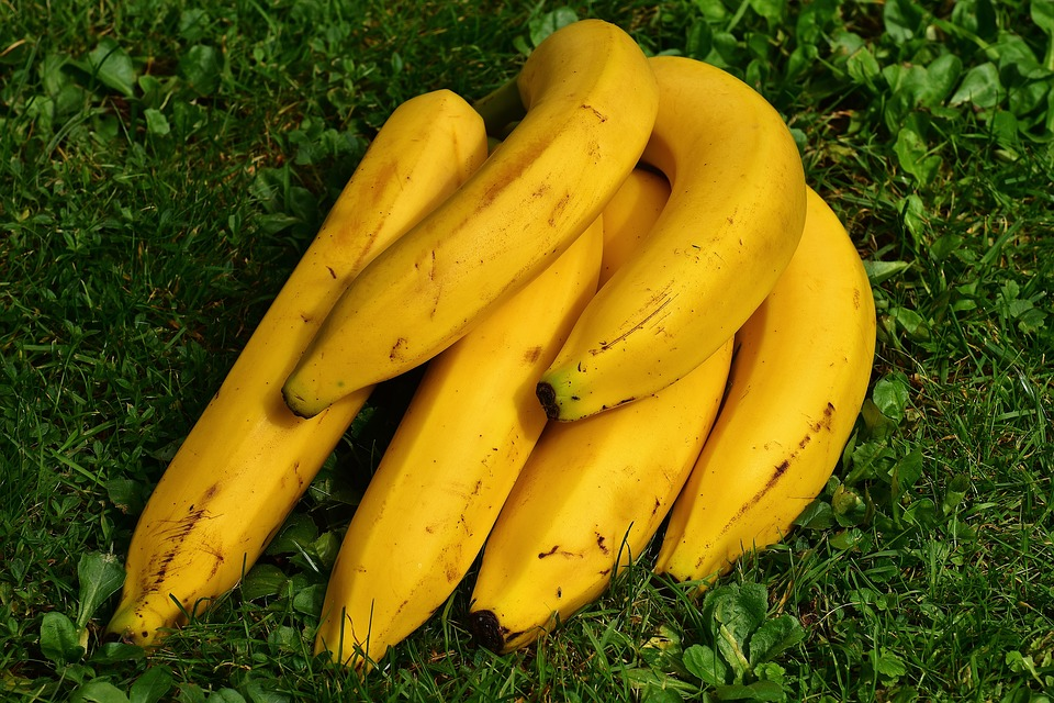 Bananas Is it Good or Bad For Your Weight Loss-banana